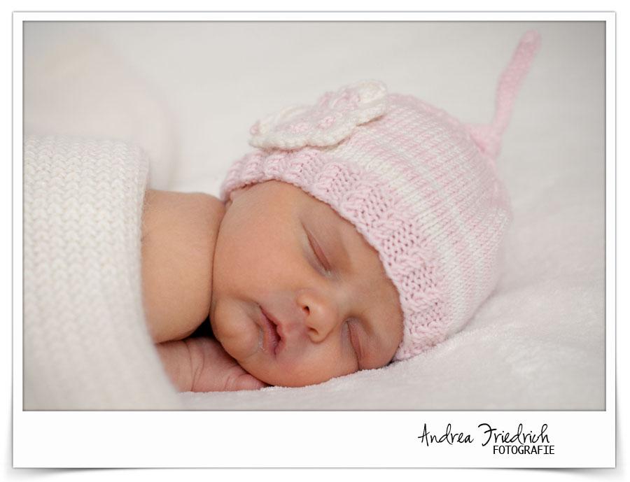 www.andrea-friedrich.com